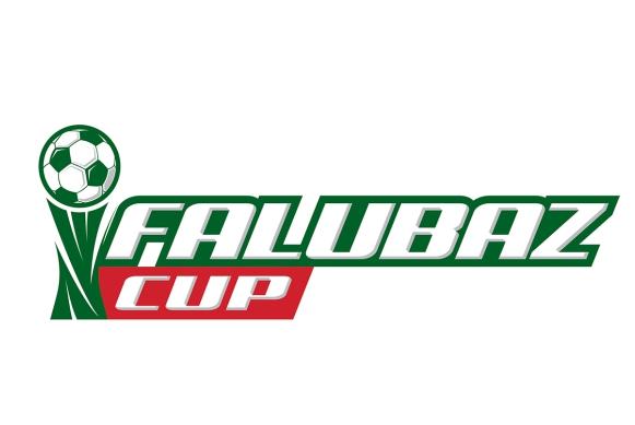 Ilustracja do informacji: FALUBAZ CUP 2015 JUŻ TUŻ TUŻ!